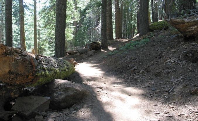 EagleRock-New-Trail-Photo