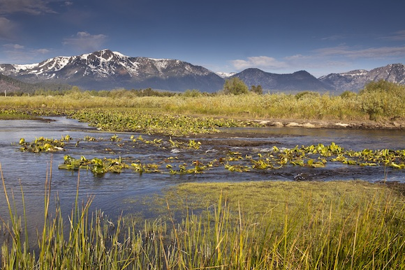 Tahoe-Conservancy-Truckee-Marsh-Restoration