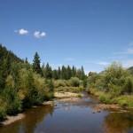 truckee-river-restoration-project