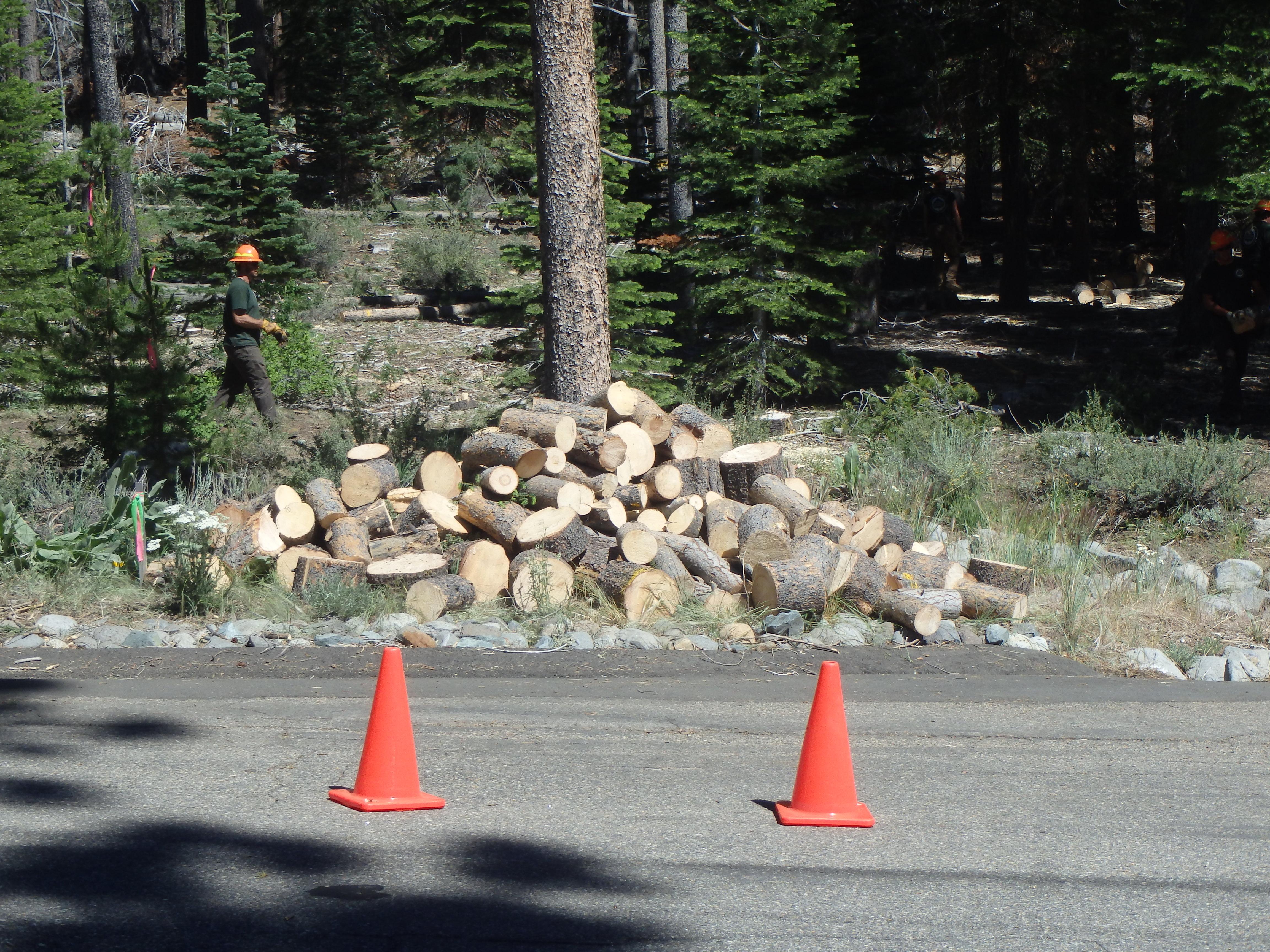 Community Firewood Program