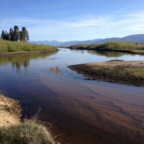 Upper Truckee River_Cove East