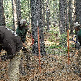 crew_removing_barbed_wire_resized