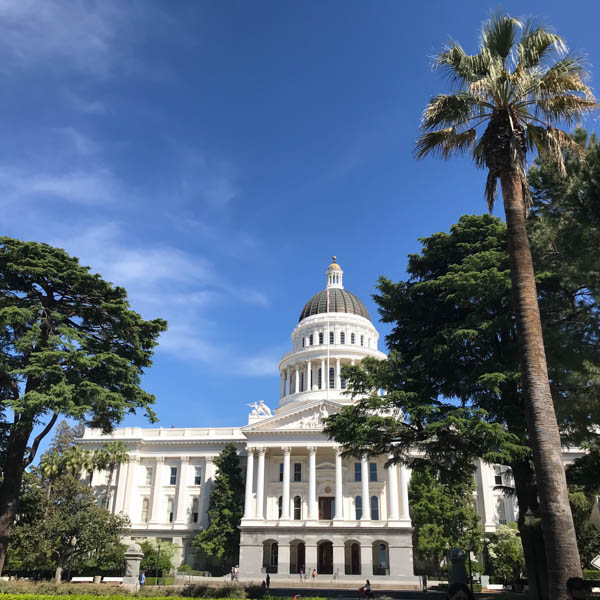 April's Special Conservancy Board Meeting in Sacramento