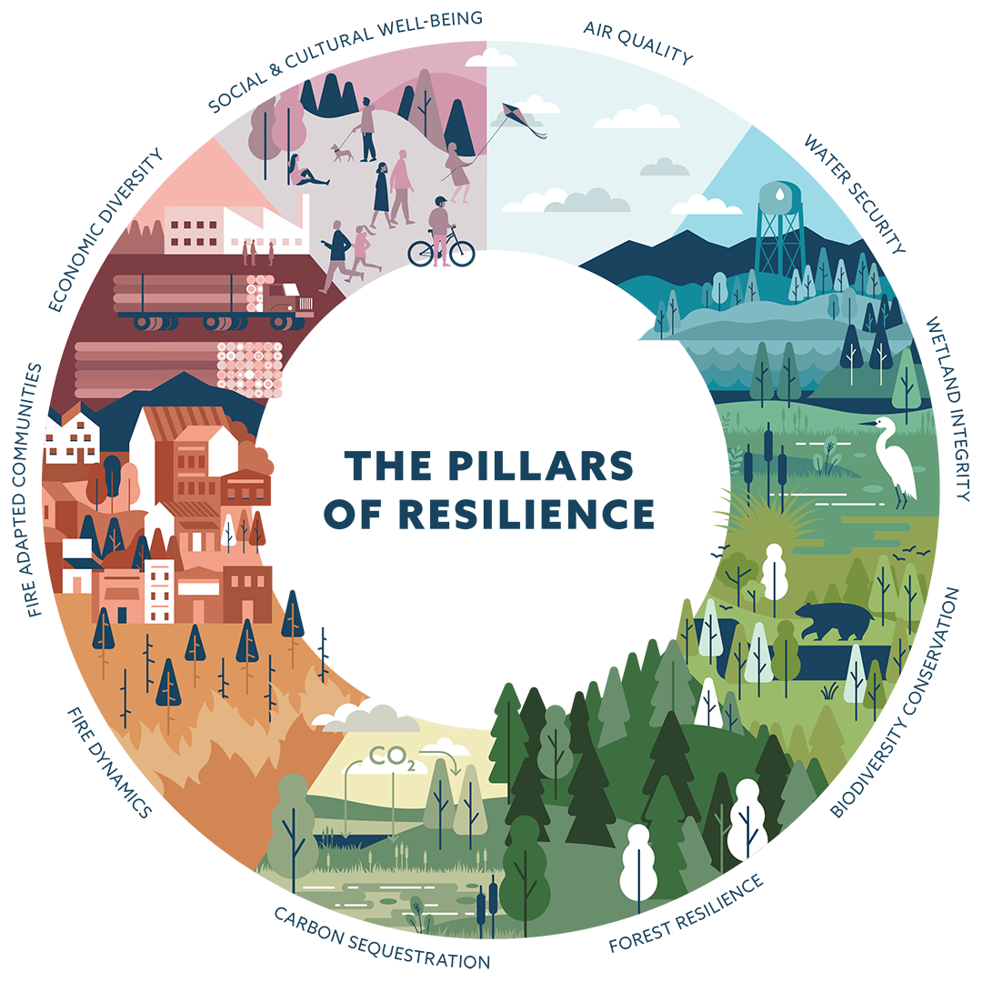 Framework for Resilience – Tahoe-Central Sierra Initiative